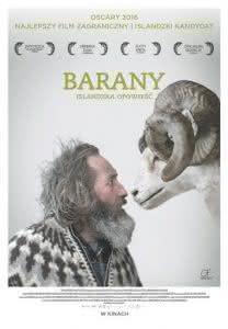 """Plakat filmu """"Barany. Islandzka opowieść"""""""